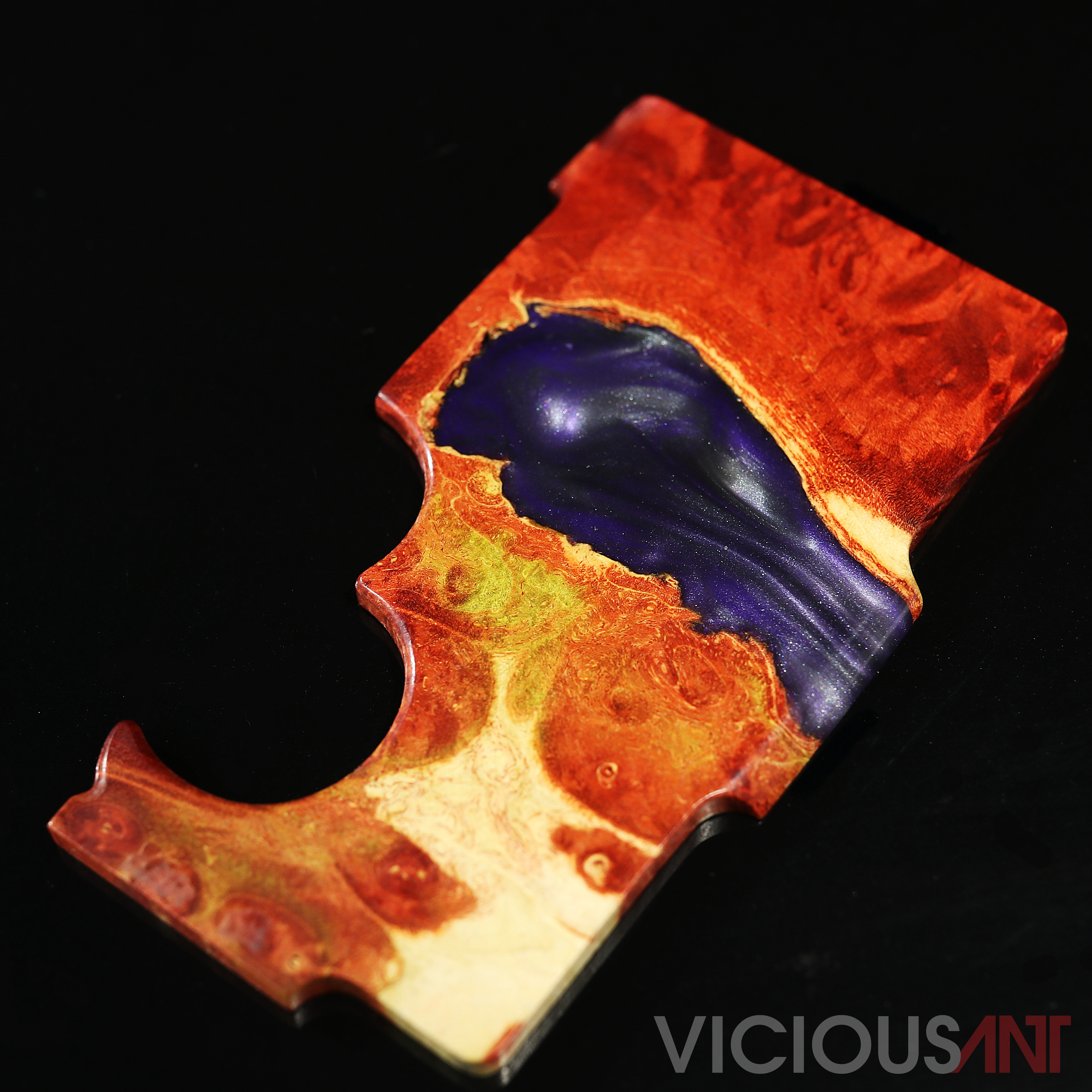 Club Door #15 VIEW & Vicious Ant | Club Doors